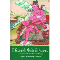El gozo de la meditación avanzada